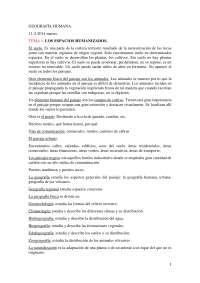 Geografía Humana. Temas: 1 (Los espacios humanizados), 2 ( Geografía de la población) y 3 (La ciudad