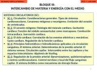 Sistema Circulatorio. Diapositivas