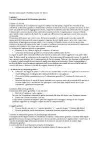 Riassunto diritto costituzionale e pubblico di Caretti De Siervo