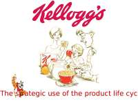Progetto kellogg's per l'esame di inglese