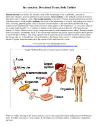 Introduction, Directional Terms, Body Cavities - Cell Biology - Lecture Notes