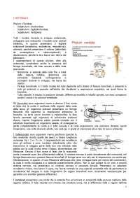 Esame di Anatomia Comparata