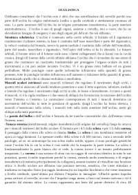 APPUNTI DI OCULISTICA -INFERMIERISTICA