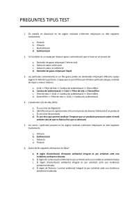 Preguntes test examen