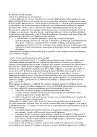 Riassunto Mediazione (Consulenza) PPSDCE Castelli