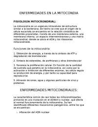 enfermedades en la mitocondria