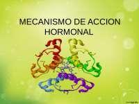 Accion Hormonal (Bioquimica)