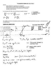 Tecnica delle Costruzioni in c.a. e precompresso-appunti sbobinati teoria PARTE1
