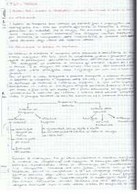 Teoria dei Sistemi di Trasporto - Appunti teoria