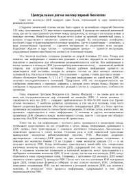 Центральная догма молекулярной биологии доклад по биологии