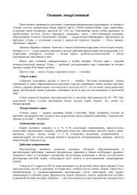 Окопник лекарственный доклад 2011 по биологии