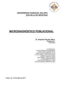 Microdiagnostico Poblacional