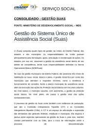 Gestão SUAS Consolidando Objetivos e Estratégias de Organização