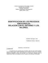 IDENTIFICACION DE LOS PROCESOS EMOCIONALES. RELACION CON EL ENTORNO Y LOS VALORES.