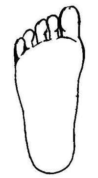 Foot diagram used for cosmetic corections
