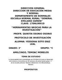 protocolo de investigacion educativa PRONALES