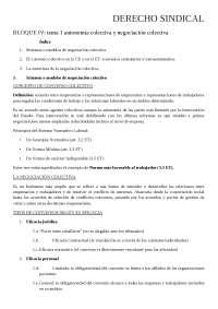 Resumen derecho sindical bloque IV
