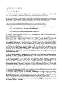 Capitolo XIII DIRITTI E LIBERTÀ del libro BIN PITRUZZELLA