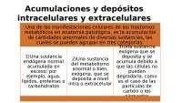 acumulaciones y depósitos intracelulares y extracelulares