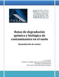 Rutas de degradación química y biológica de contaminantes en el suelo