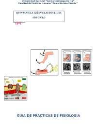 reflejos osteotendinosos y cutaneos