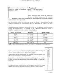 Uso y manejo de micropipetas