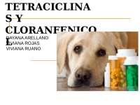 tetraciclinas y cloranfenicol