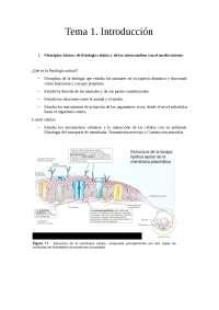 Introducción Fisiología Animal