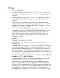 Anatomia de Cabeza (generalidades y desarrollo del tema).