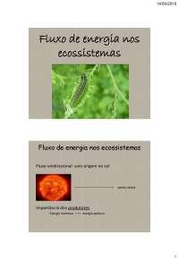 ecologia  ciclos biologicos