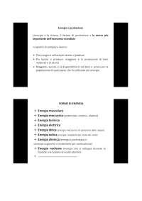 slides dettagliate di merceologia