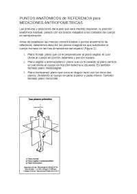 puntos anatomicos y antropometricos