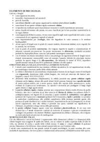 Microbiologia farmaceutica (Micologia)