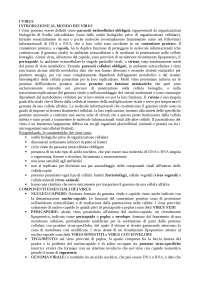 Appunti microbiologia farmaceutica (virologia)