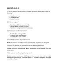 QUESTIONS 3, Apuntes de Endocrinología
