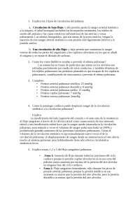 Resumen Fisiologia 37 38 guyton