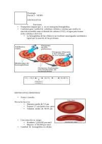 Resumen Fisiologia hematologiaaaaaa