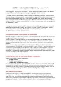 Riassunto di Lezioni di consulenza di Shein, libro a scelta per il corso di consulenza di Castelli, Sintesi di Psicologia Delle Organizzazioni