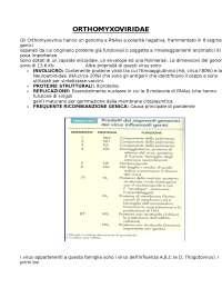 Virus influenzali ORTHOMYXOVIRIDAE