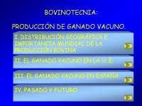 La producción de ganado vacuno