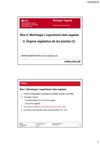 3. Els òrgans vegetatius de les plantes [2]. Presentació