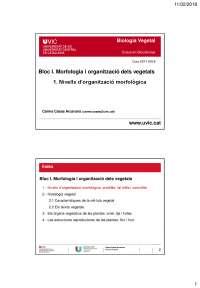 1. Nivells d'organització morfològica