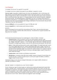 soluzione caso DISNEYLAND strategia di internazionalizzazione