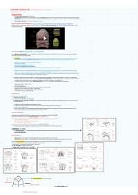 Appunti di chirurgia maxillofacciale