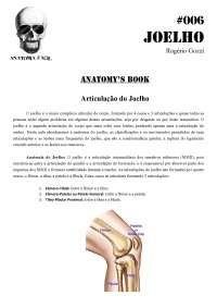 Anatomia para estudo