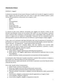 DIRITTO PROCESSUALE PENALE - PROCEDURA PENALE