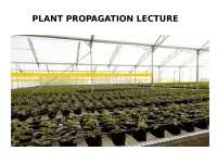 Plant Propagation lecture notes concise for easy understanding