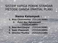 Akuntansi partial plan