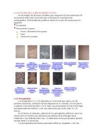 micro estructura cristalina de metalurgica