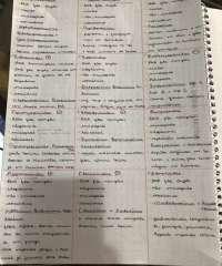 Vírus - microbiologia